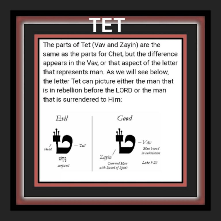 Study #1: TET