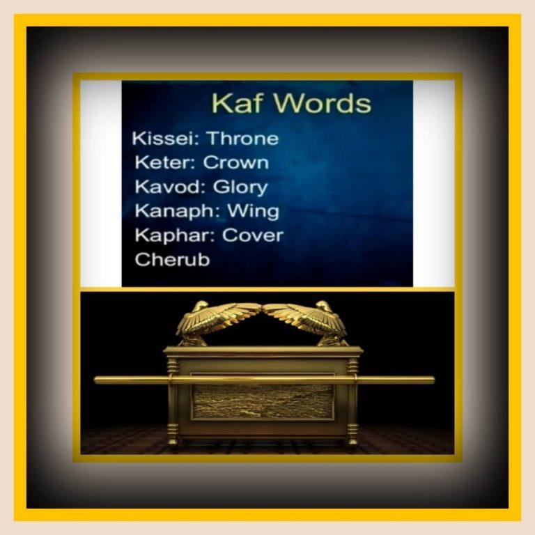 Study #28: KAF